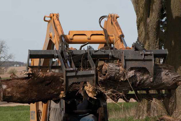 Woods | Skid Steer Attachments | Root Grapples for sale at Colerain, North Carolina